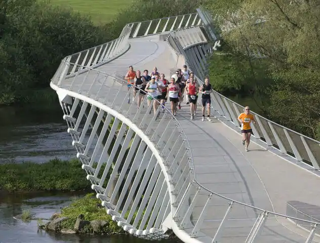the living bridge