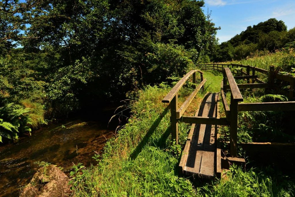 Things to do in Ballyhoura Country - Keale River Walk