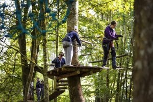 lough key forest park activity park